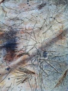 Sprayed with iron water and scattered with casuarina needles
