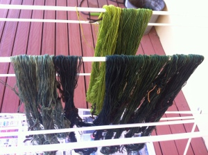 It's always a joy to see dyed skeins hanging to dry!